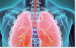 overview_Respiratory